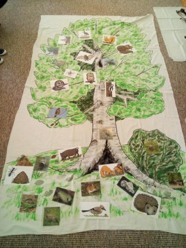 Les a život v lese-beseda